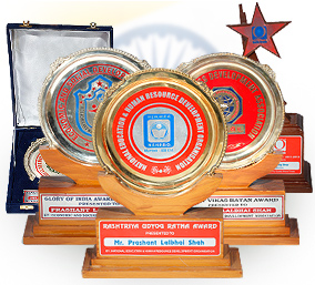Awards of The Flag Shop